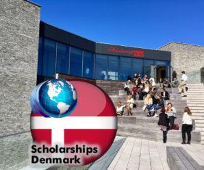 Danish Government Scholarship at University of Southern Denmark, 2019