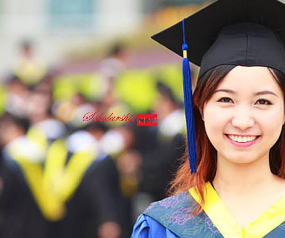 china scholarship