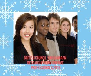 British Council Sub Saharan  Research,Young Creative Professionals,2019