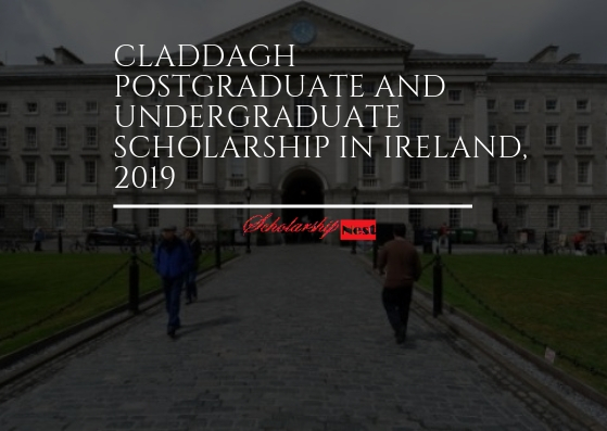 Scholarship in Ireland, 2019