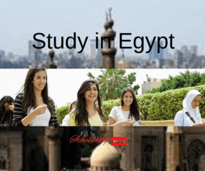 Cairo University Cheapest Universities in Egypt for International Students