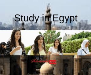Cairo University Cheapest Universities in Egypt for International Students