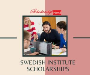 Swedish Institute Scholarships,Western Balkans and Turkey for Master's