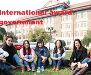 Chinese International award Chinese government Tianjin University 2020