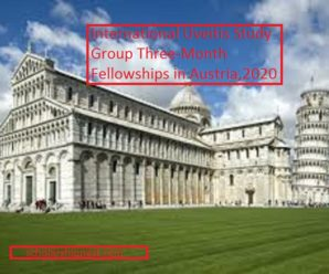 International Uveitis Study Group Three-Month Fellowships in Austria,2020
