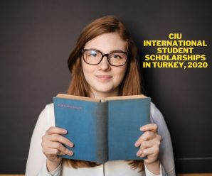 CIU International Student Scholarships in Turkey, 2020
