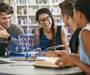 SDU Faculty of Humanities PhD International Fellowships, Denmark, 2020