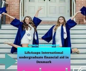 LifeAsapa International undergraduate financial aid in Denmark