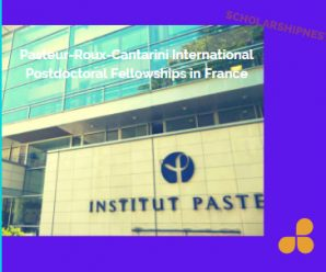 Pasteur-Roux-Cantarini International Postdoctoral Fellowships in France