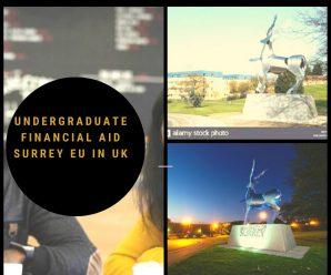 undergraduate financial aid Surrey EU in UK