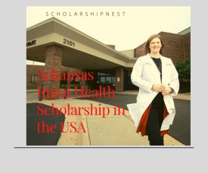 Arkansas Rural Health Scholarship in the USA