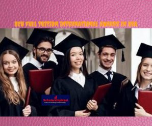 HCU Full tuition international awards in USA