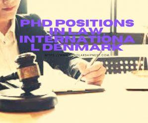 PhD Positions in Law, International Denmark