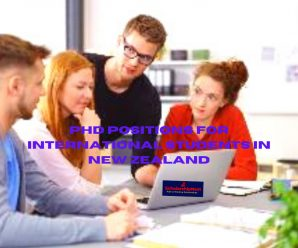 PhD Positions for International Students in New Zealand