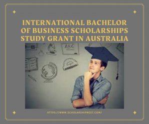 International Bachelor Of Business Scholarships Study Grant In Australia