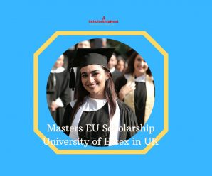 Masters EU Scholarship University of Essex in UK