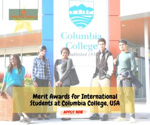 International Students Merit Awards for  at Columbia College, USA