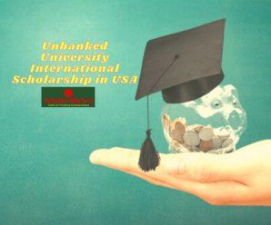 Unbanked University International Scholarship in USA