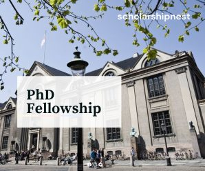 PhD Fellowship in Human Centered Data Science and Computer Supported Cooperative Work, Denmark